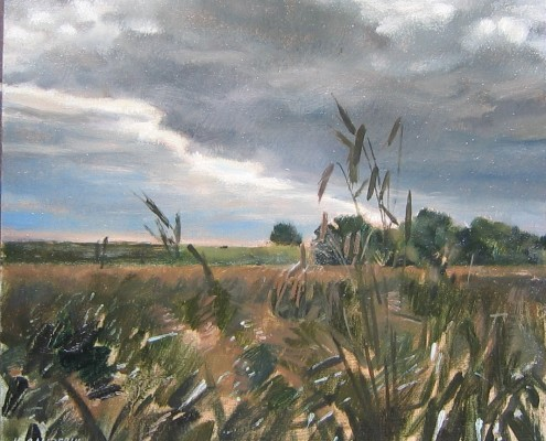 Pejzaż z okolic Wielunia, olej-płotno, 40x50 cm